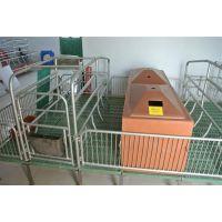 复合板母猪产床2.1*3.6 母猪产床猪产床 母猪分娩床 养猪设备仔猪保育 限位栏 各种食槽