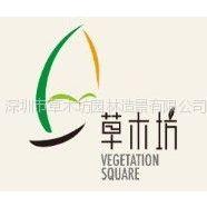 深圳市草木坊园林造景有限公司