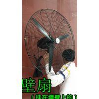 供应合肥黑色大风扇 烧烤落地扇 家用工业风扇