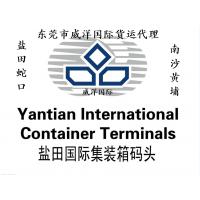 东莞整柜发到迪拜要求做DDU海运双清到门|迪拜海运散货清关包派送上门