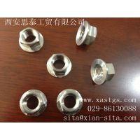 供应威特防腐钛螺丝,西安标准件,钛螺丝价格