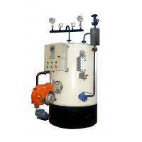 供应大强 LWS-0.2-0.7-Y 免监检一体式燃油气蒸汽锅炉
