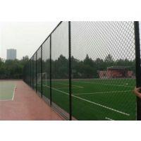耀朗丝网(图)、体育场围栏网厂家、体育场围栏网