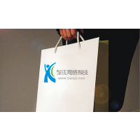 做网站建设、seo优化推广、网络营销,邹氏网络建站公司