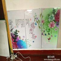 沧县圣盾电采暖设备厂 生产批发远红外碳晶电暖画 家用发热板