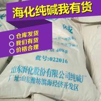 山东海化纯碱批发纯碱价格趋势图碳酸钠99工业级