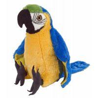 鹦鹉毛绒玩具小鸟毛绒玩具公仔