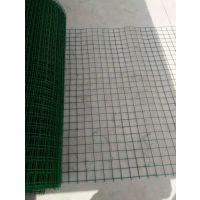 清仓处理5x5孔 6x6孔 230丝浸塑绿色荷兰网
