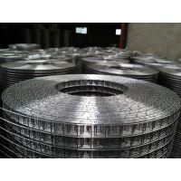 不锈钢电焊网多少钱一米