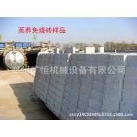 加气混凝土砌块设备(加气砖设备) 加气砖砌块砖蒸压砖加气砌块砖
