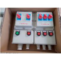 威创防爆BXMD51防爆动力配电箱 IP54IIBT4