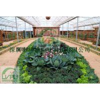 绿浦观赏温室 生态餐厅