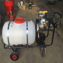 润丰高压喷雾器 终身保修的高压喷雾器 工作效率高