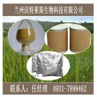 知母皂苷元 甘肃大量现货 纯天然 厂家直销 专业提取 现货包邮