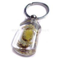 【热销排行榜】裤子型 昆虫琥珀 透明昆虫标本琥珀钥匙扣
