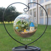 微景观 创意植物 迷你盆栽 DIY植物 生日礼物 苔藓生态瓶
