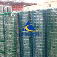 浩洲生产优质荷兰网 养殖铁丝网 果园围栏网浸塑养殖围网场地隔离带