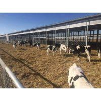 山东汶上油布厂供应畜牧场专用卷帘布、防寒猪场卷帘布、三防产业用布