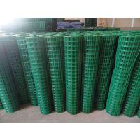 安平丰科专业生产 涂塑电焊网 Q235围栏网 家禽护栏网