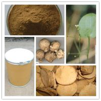 泽泻提取物10:1 纯植物提取 量大优惠