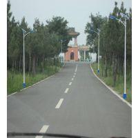 张家口桥东区农村专用太阳能路灯 飞鸟一体化安装