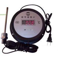 中西供应 数显深水温度计(标配5米现货) 型号:WQST-DTM280库号:M400906