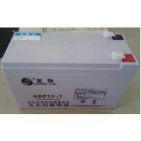 圣阳阀控式铅酸免维护蓄电池SP12-100现货