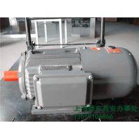 上海德东电机 厂家直销 YEJ2-200L1-6 18.5KW B3 电磁制动电动机
