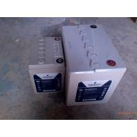 山西艾默生蓄电池U1265S/A多少钱