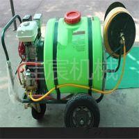 果园管理用拉管式灭虫打药机 高射程杀虫喷雾器型号齐全