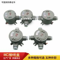 IIC防爆接线盒,一通、二通、三通、四通