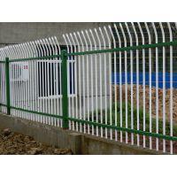 小区锌钢防护网✰滨州小区锌钢防护网✰小区锌钢防护网厂家