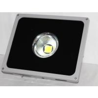 台湾晶元芯片 SK-TG1 50W 聚光灯 室外照明灯具