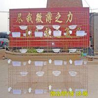 安平纳诚加粗加密2米长鸽子笼子 3层12笼位鸽笼价格