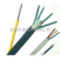 供应F26,F46,3F耐高温计算机电缆-安徽天康集团股份有限公司