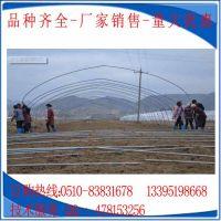 供应浙江大棚养殖 种植热镀锌钢管大棚骨架 Q195镀锌管及配件