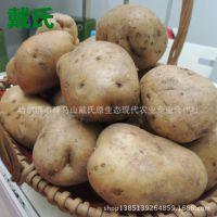 现货销售2014年东北农家薪土豆 高山速冻土豆 价格实惠