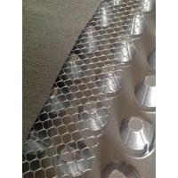 25mm排水板批发,25mm排水板,绿三江(已认证)