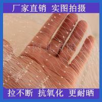 河南养殖网 厂家直销各种规格的葡萄尼龙防鸟网