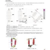 固牌 跌落式避雷器 YH5WS-17/50DL 永固电缆附件有限公司-官网