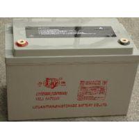 力源蓄电池12V100AH厂家直销