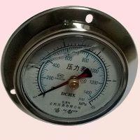 面板式双针耐震压力表铜接头YNJ-100ZT