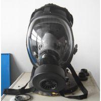 防毒面具/全面型呼吸防护器 型号:BH200-HSGF500库号:M308265