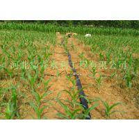 郑州市小麦田喷灌设备|五孔软管