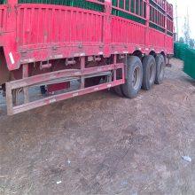 开发区防护网 农家乐隔离栅 工厂围墙护栏