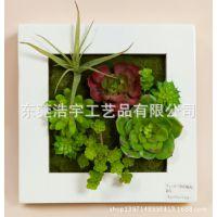 热带雨林植物墙 迷你多肉植物组合装饰景象 仿真植物墙批发