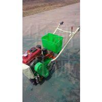 华新农业小型玉米种种植机械 多行农田玉米精播机