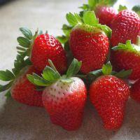 咖啡草莓苗哪里好|草莓苗|乾纳瑞农业科技(在线咨询)