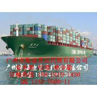 湛江到上海海运物流/20GP 40HQ