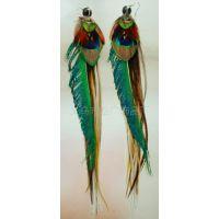 耳环直销多根厂家羽毛时尚外贸欧美耳环耳环v耳环个性原单张明阳图片